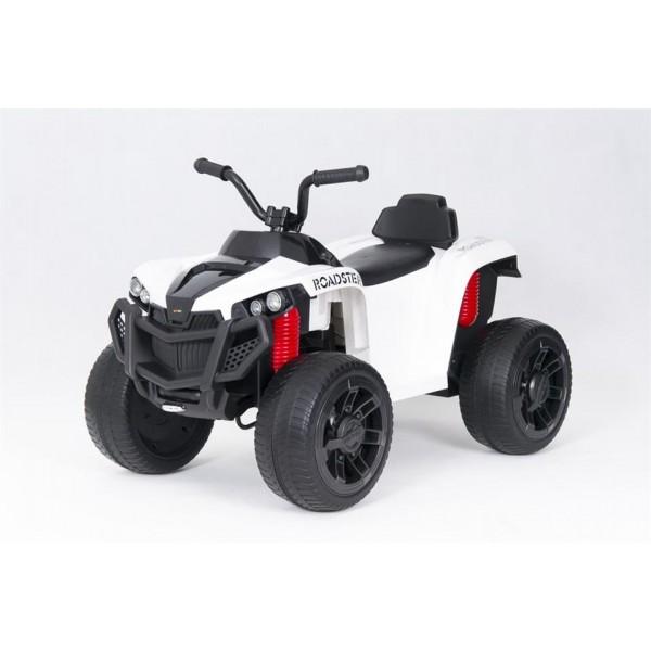 TO-MA (PL) SW888 elektromobilis QUAD EVO