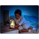 REER ColourLumy naktinis LED šviestuvas Pelėdos