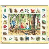 Larsen lietuviška dėlionė (puzzle) Miške Maxi