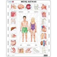 Larsen lietuviška dėlionė (puzzle) Žmogaus kūno dalys Maxi