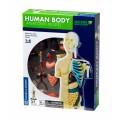 """Thames & Kosmos edukacinė priemonė - modelis """"Žmogaus anatomija"""" (260830)"""